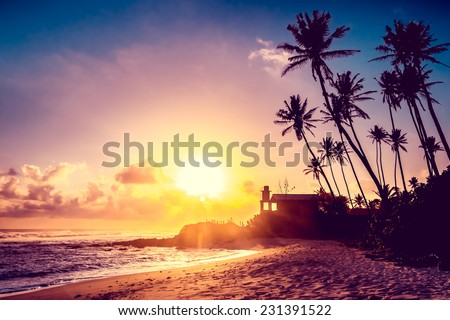 Extremely beautiful  sunset under the coconut plams on Sri Lanka beach. - stock photo