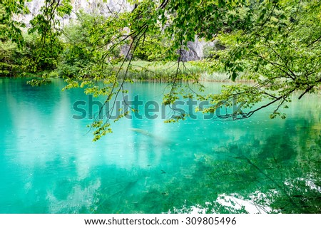 Extremely clear water of Plitvice Lakes, Croatia. Rainy day. - stock photo