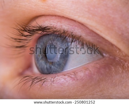 eye in close up - stock photo