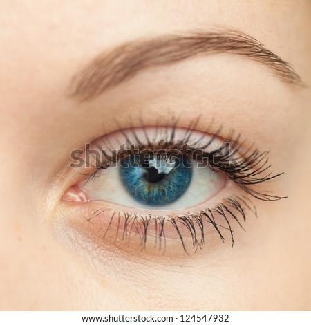 Eye macro. Woman eye. Macro image of human eye. - stock photo