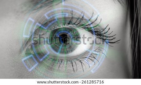 Eye viewing digital information. Conceptual image. - stock photo