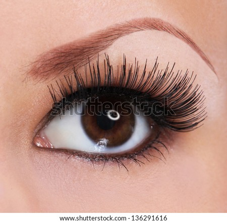 eye with long eyelashes. beautiful woman brown eye - stock photo