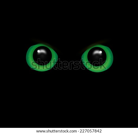 Eyes of a wild animal in the darkness - stock photo