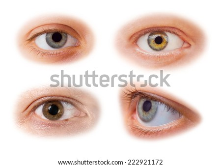 Eyes set - isolated on white background - stock photo