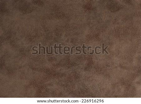 Fabric Sofa Living - stock photo