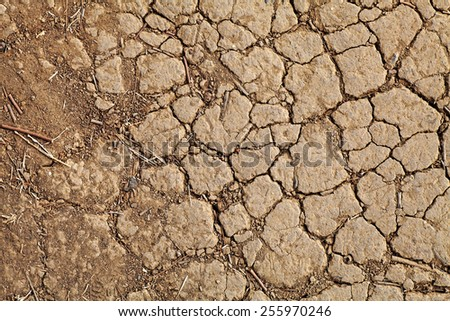Facade of a cracking dried reddish laterite dirt erosion surface for textural background.  - stock photo