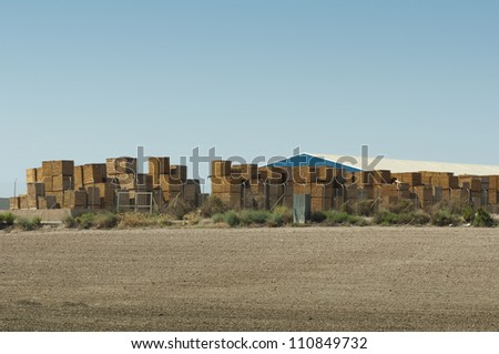 Factory production of pallets. Big warehouse outside - stock photo