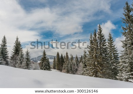 Fairy winter forest with snow-covered fir trees and a beautiful blue sky - stock photo