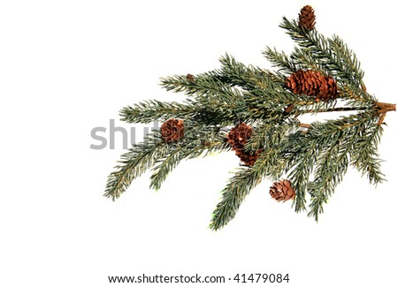 fake Christmas tree branch, isolated on white - stock photo