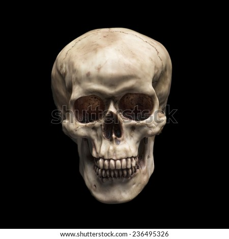 Fake skull head isolated over a black background - stock photo