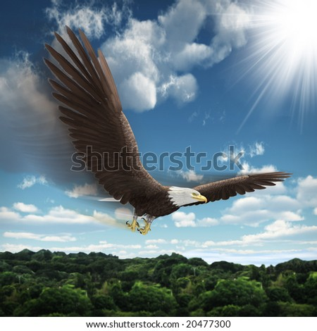 Falcon flying above forest