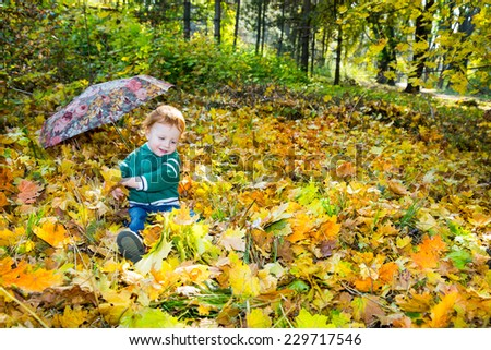 Fall. Adorable child boy with leaves in autumn park - stock photo