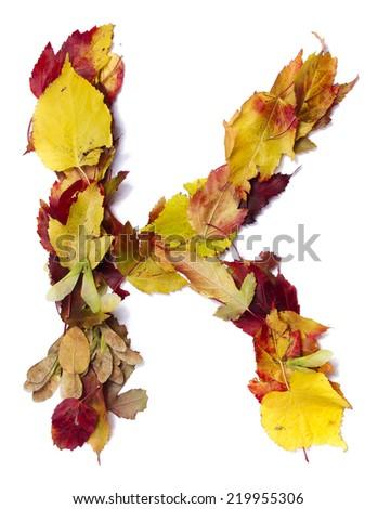 Fall alphabet letter K - stock photo