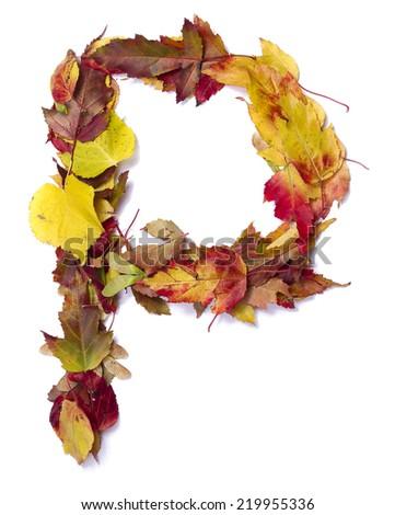 Fall alphabet letter P - stock photo
