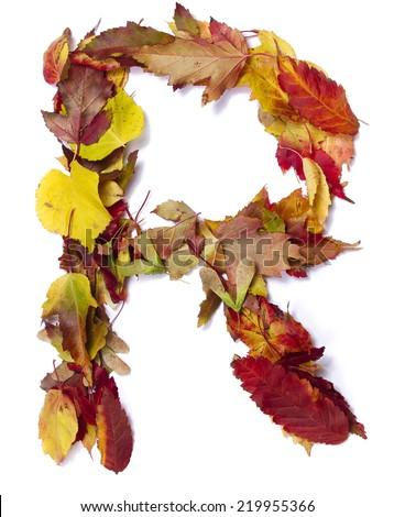 Fall alphabet letter R - stock photo