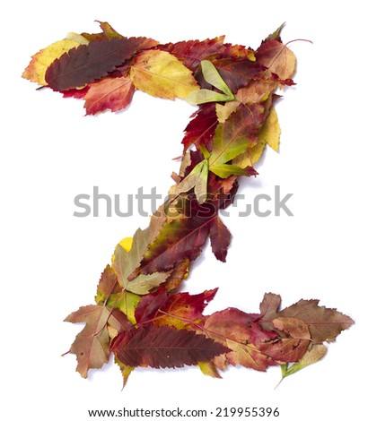 Fall alphabet letter Z - stock photo