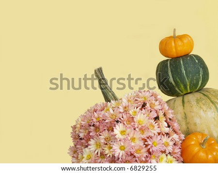 fall - assorted squashes and a pumpkin covered with mums - stock photo