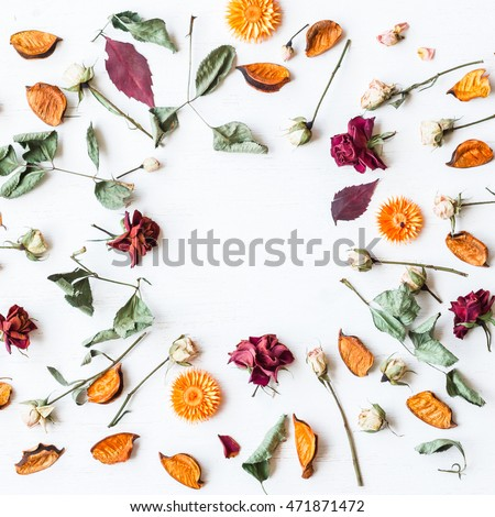 Fall. Autumn composition. Frame made of dried flowers and autumn leaves. Square, top view, flat lay