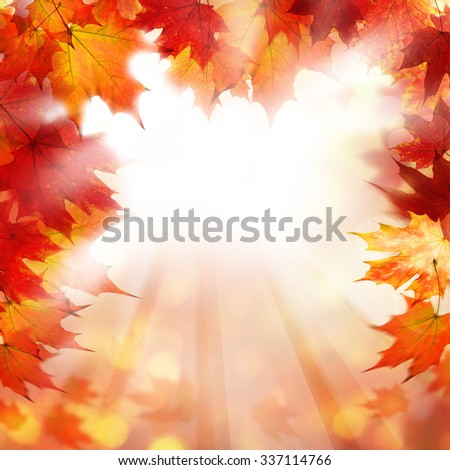 Fall Background with Autumn Maple Leaves - stock photo