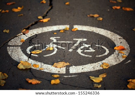 Fall bike path