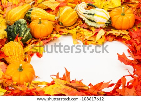 Fall border of colorful leaves and pumpkins with gourds