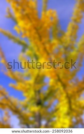 Fall Color Blur - stock photo