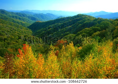 fall color, Great Smoky Mountains National Park - stock photo