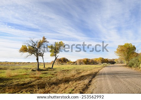 Fall Colors along Gravel Road in New Mexico - stock photo