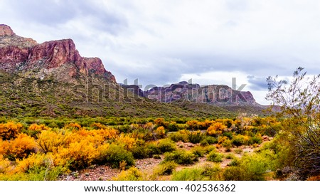 Fall colors and mountains at the Salt River in central Arizona in the USA - stock photo