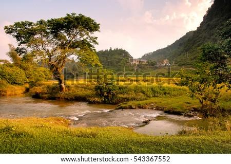 Fall colors at Ban Gioc, Cao Bang, Viet Nam
