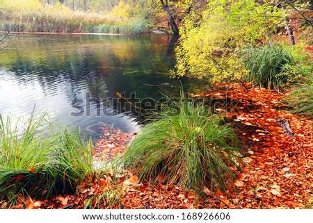 Fall colors in Plitvice National Park, Croatia, Europe - stock photo