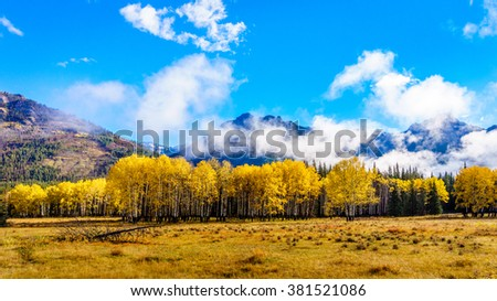 Fall Colors of deciduous trees in the Rocky Mountains in Banff National Park with a few low clouds drifting by in the Rocky Mountains in British Columbia, Canada - stock photo