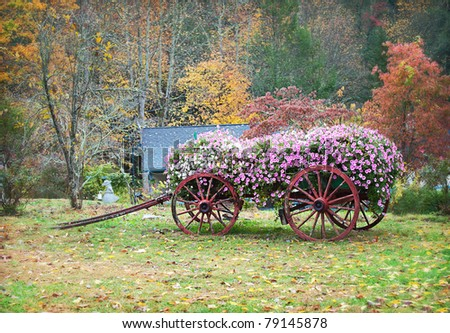 Antique wagon stock images royalty free images vectors Usa countryside pictures