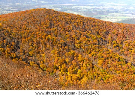 Fall Colors on an Appalachian Ridge in Shenandoah National Park in Virginia - stock photo