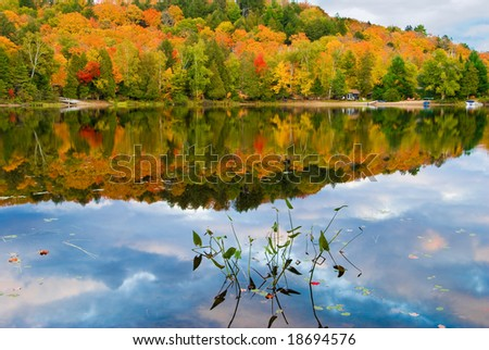Fall colors reflected in a lake in Canada's Algonquin Park - stock photo
