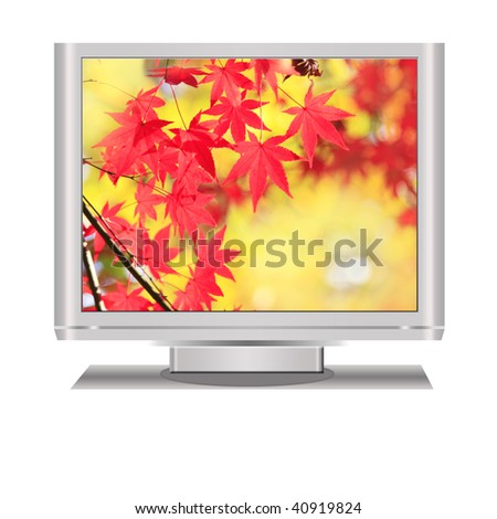 Fall display in an isolated  lcd television illustration digital high resolution. - stock photo