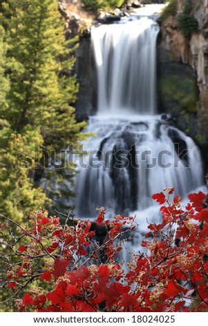 Fall foliage with Undine waterfall in the background, Yellowstone national park - stock photo