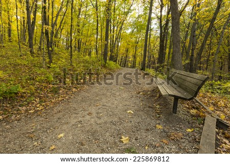 Fall Hiking Trail In Woods - stock photo