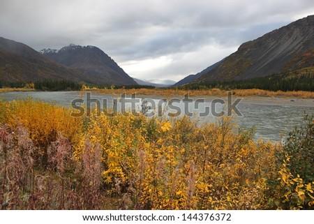 Fall in Denali National Park - stock photo