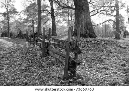 Fall landscape. - stock photo