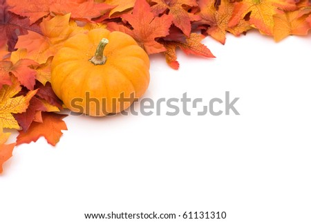 Fall leaves with a pumpkin at the top isolated on white, autumn background