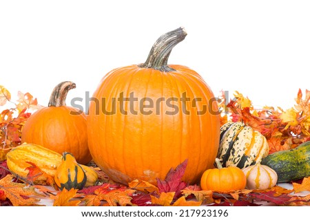 Fall leaves with pumpkins and squash on a white background - stock photo