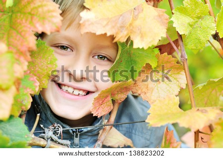 fall portrait of young boy - stock photo