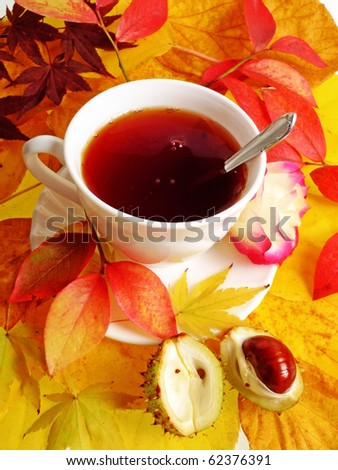 fall still life with cup of tea