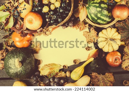 Fall Still Life with pumpkins and gourds against colorful background with room or space for copy, text. Horizontal with vintage cross process. - stock photo