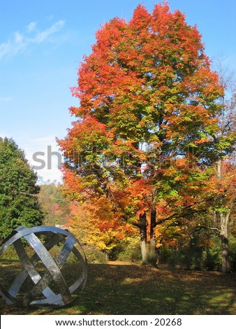 Fall tree and statue. - stock photo