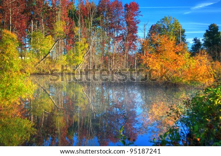 Fall trees and sky reflecting off the water in a lake. - stock photo