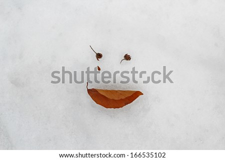Fallen leaf and buds drawing a face on the snow - stock photo