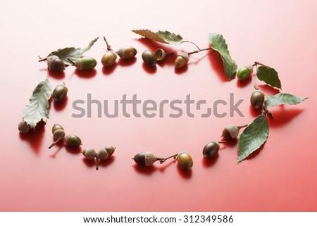 Fallen leaves, acorn, frame - stock photo