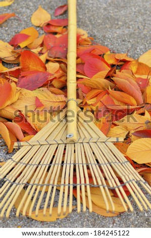 Fallen leaves and rake